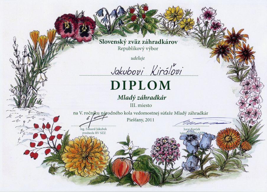 diplom-111099-kiral.jpg