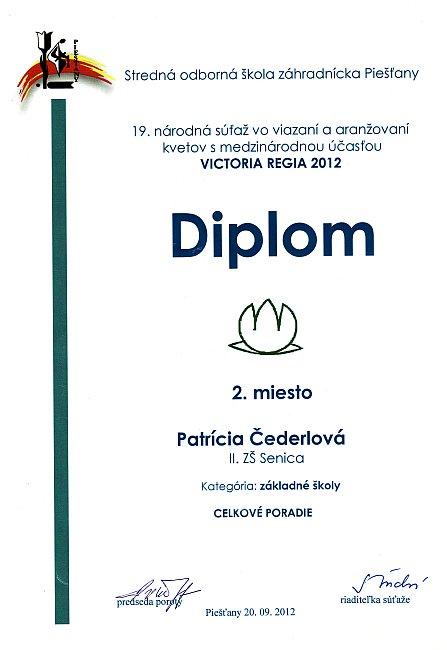 diplom-120920-cederlova-2m.jpg