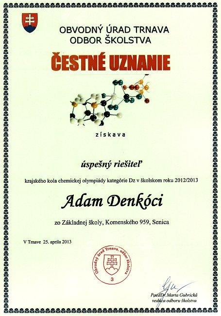 diplom-130425-cho-denkoci.jpg