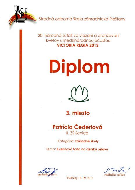 diplom-130918-cederlova-3m.jpg